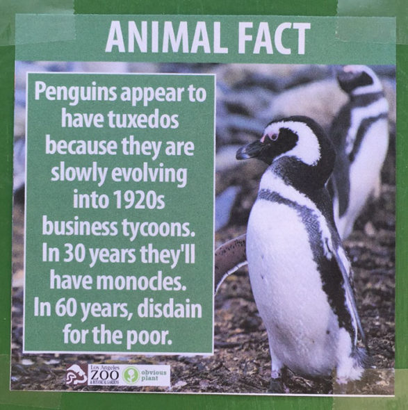 funny-animal-facts-fake-los-angeles-zoo-obvious-plant-3-5776744118a88__700