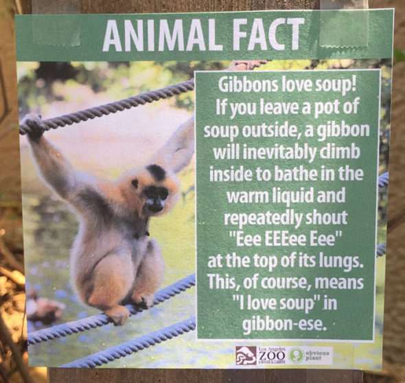 funny-animal-facts-fake-los-angeles-zoo-obvious-plant-7-5776744c094bd__700